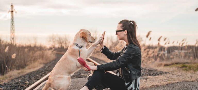 Hunde sind ein Teil der Familie – dementsprechend sollte man sie auch behandeln